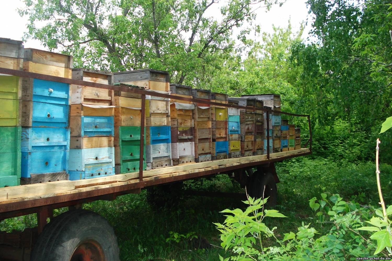 Самостоятельное изготовление прицепа для пчел - Пчелиный Дом 21